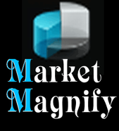profile photo of Market Magnify Investment Adviser & Research Pvt. Ltd.